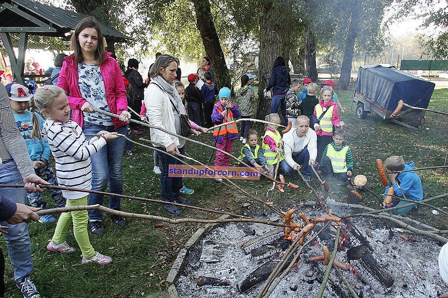 Je dovolené robiť si oheň v záhrade? Predpisy 2020
