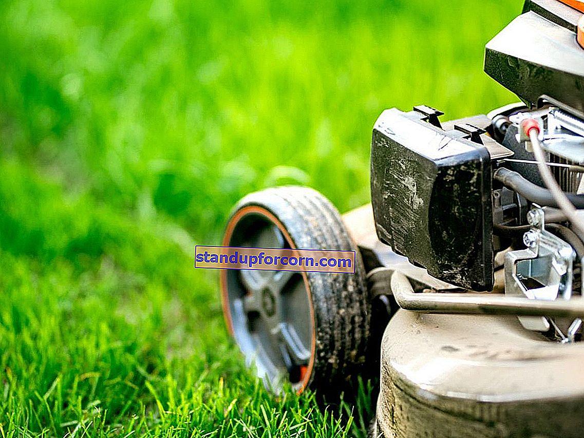 Mulčovanie trávy - čo to je, aký druh mulčovacej kosačky