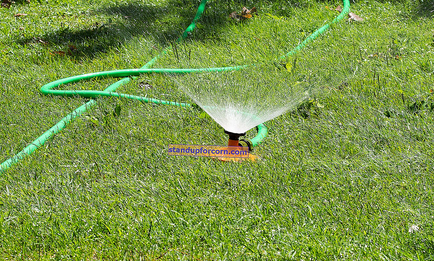 Hagespredere. Hvilken sprinkler til plenen og hagen din?