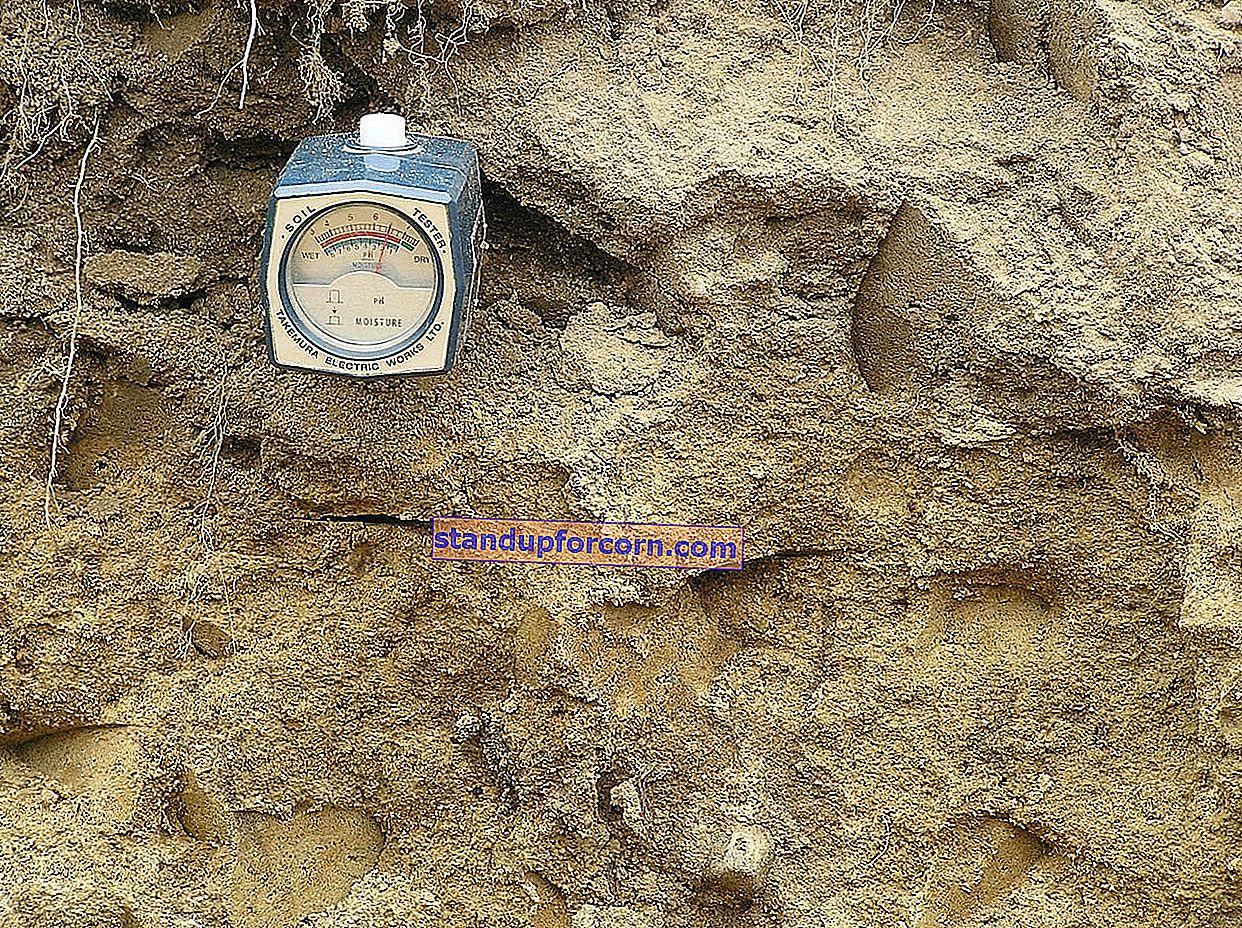 Toprak pH ölçümü. Bahçedeki toprağın pH'ı nasıl ölçülür?