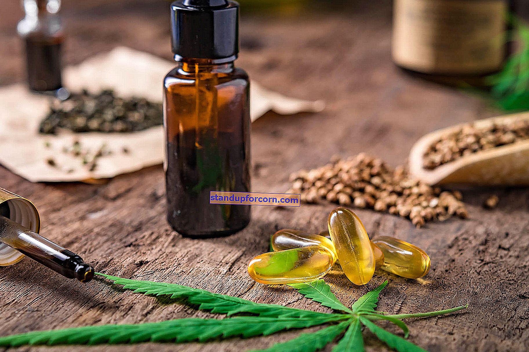 Svart spisskummen - dyrking, bruk i matlaging og medisin