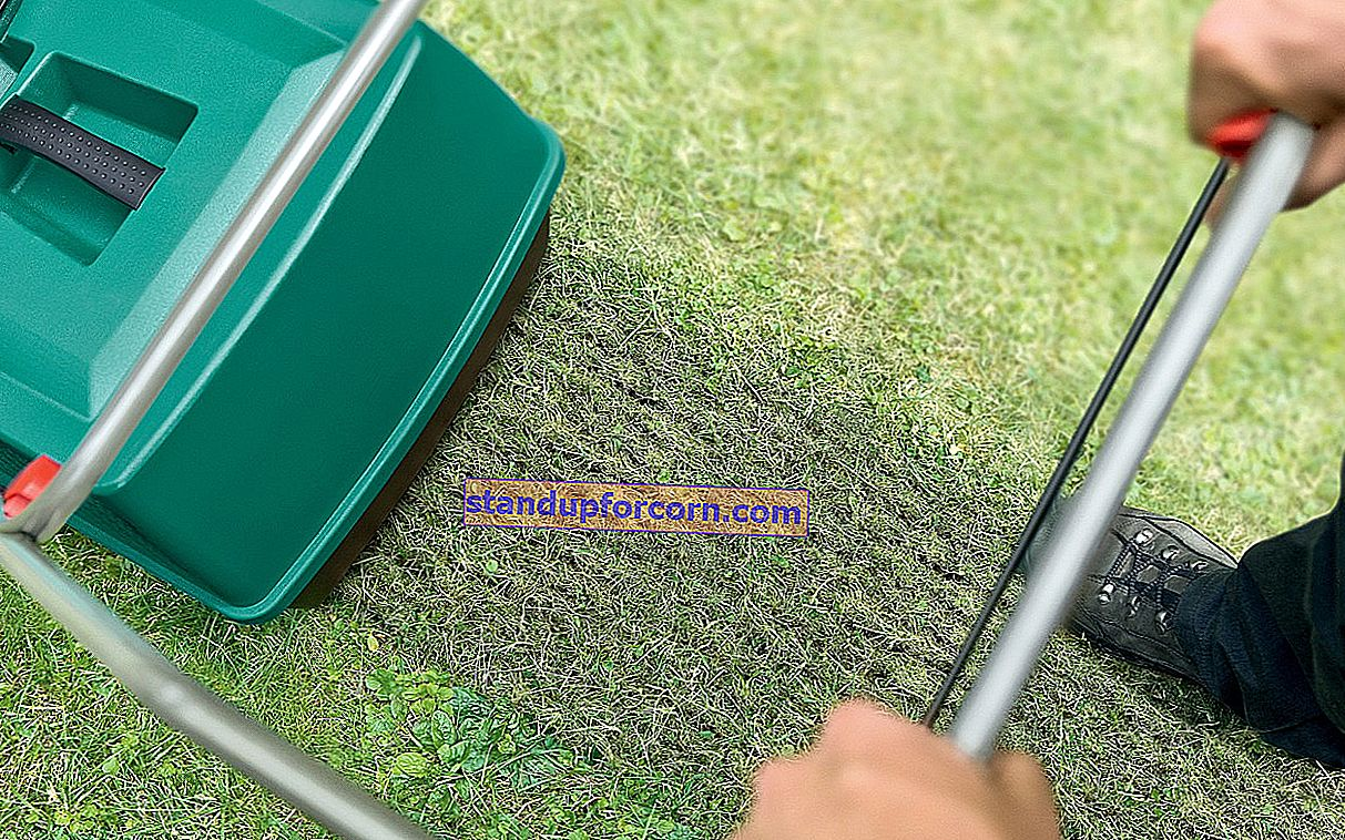 Befrukta gräsmattan. När och vad ska man gödsla gräsmattan?